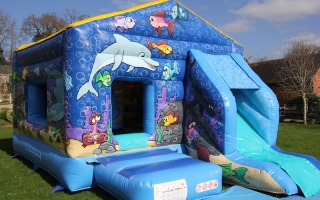 Sea World Bounce n' Slide