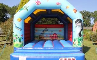 Oceans Adult Bouncy Castle