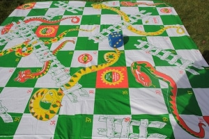 Snakes and Ladders8513