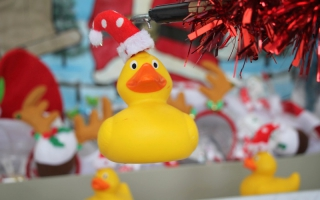 Christmas Hook a Duck