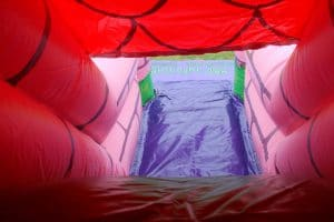 Enchanted Bounce and Slide 048