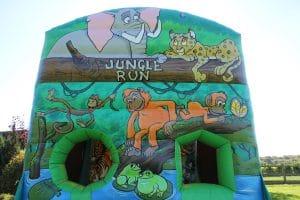 Jungle Run 3