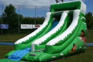 Mammoth Slide 1