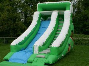 Mammoth Slide 136