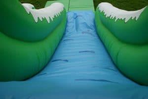 Mammoth Slide 2