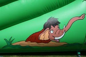 Mammoth Slide 5