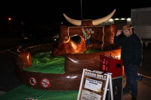 Rodeo Bull Bucking Bronco_4637