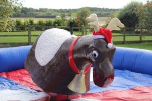 Rodeo Reindeer 5